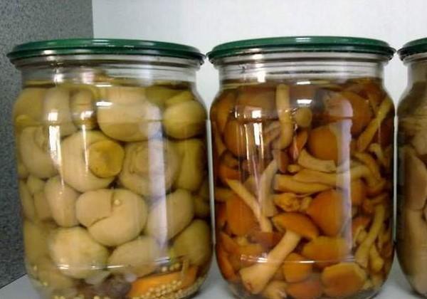 Маринованные грибы без стерилизации рецепт с фото